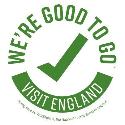 Covid19 Good to Go Logo